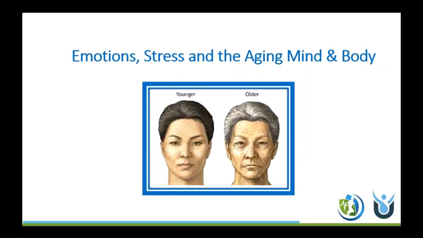 Understanding the Aging Mind